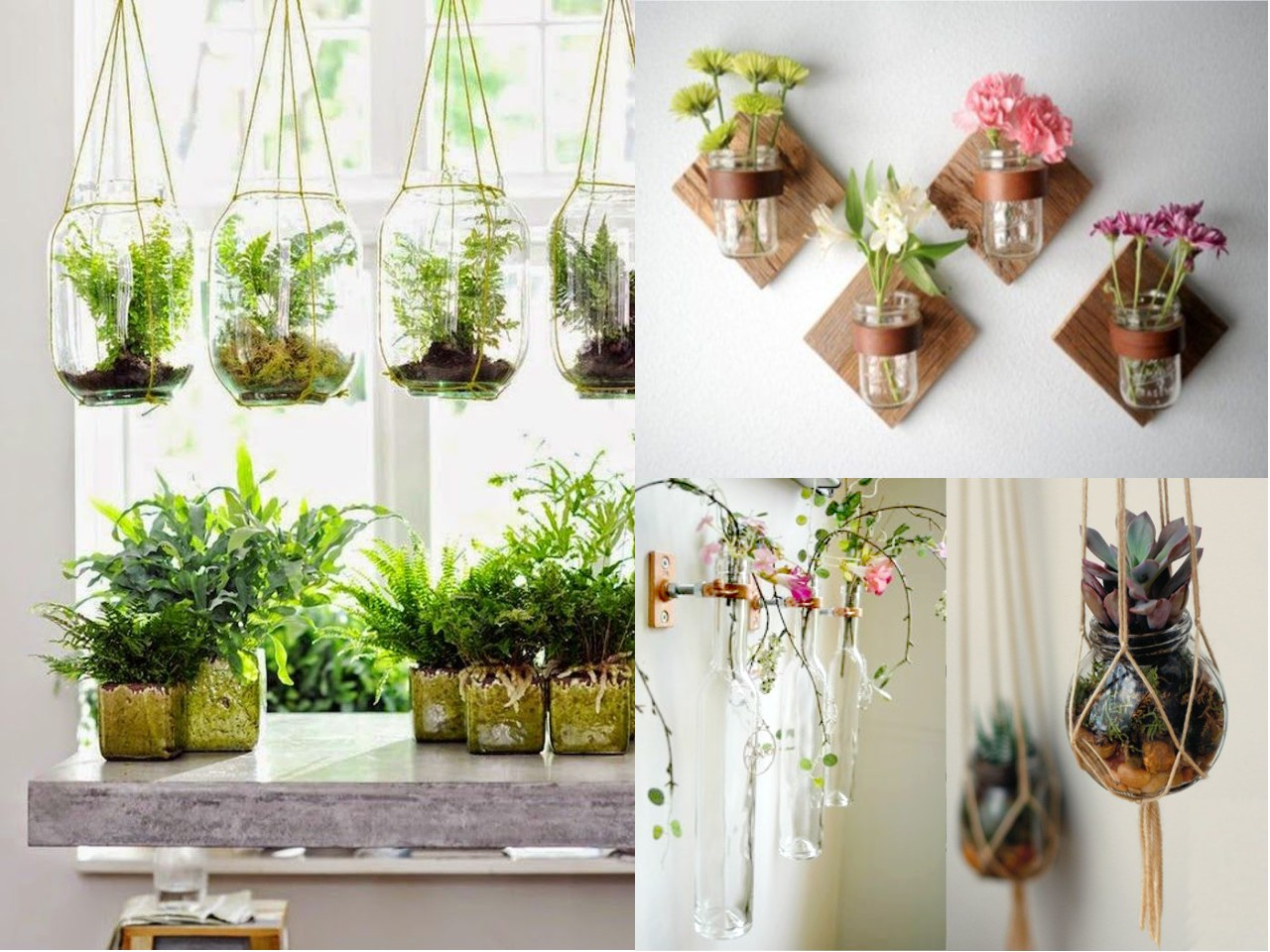 Quieres renovar alguna pared 6 ideas inspiradoras for Casas decoradas con plantas naturales